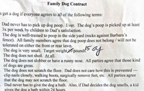 contrato-perro