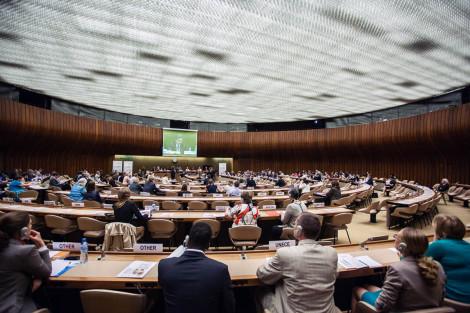 Durante la reunión de UNECE